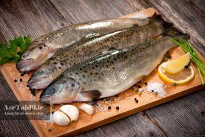قیمت ماهی